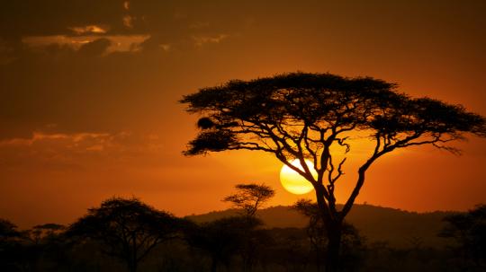 Mietwagen Namibia Rhoben Reisen