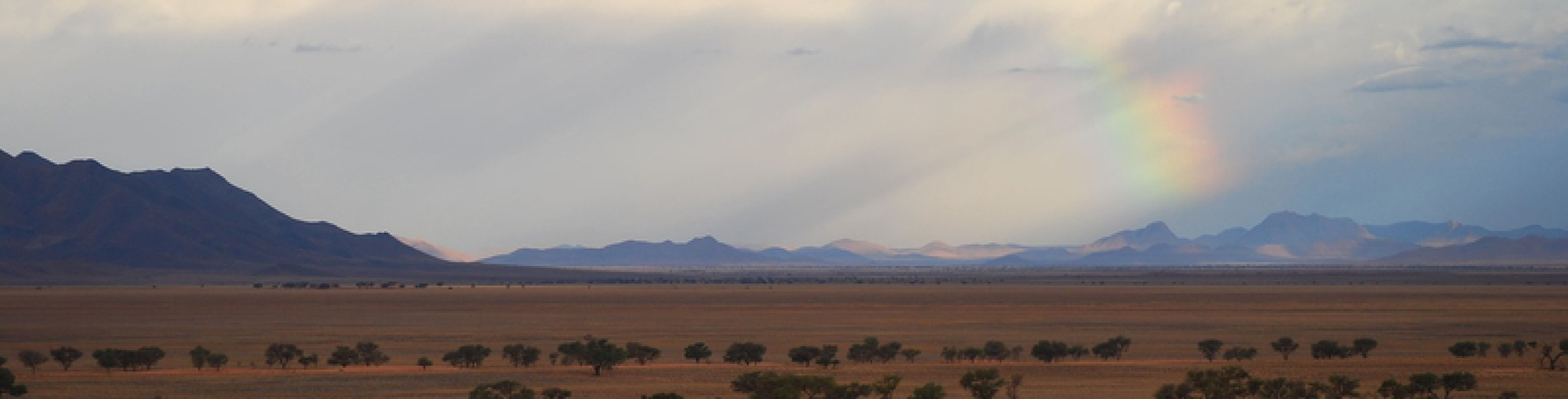 Namibia Reisen, Namibiareisen, Busrundreisen, Safaris, Mietwagen, Camper, Selbstfahrertouren, Namibia