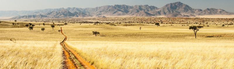 Reiseziel Namibia, Urlaub in Namibia