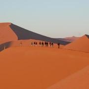 Dünen, Wüste, Namibia