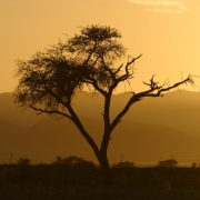 Wüste, Sonnenuntergang, Namibia