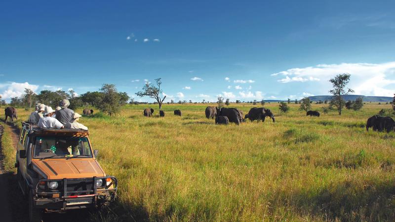 Namibia Mietwagen
