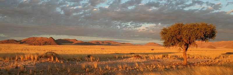 Landschaft in Namibia bei Sonnenuntergang